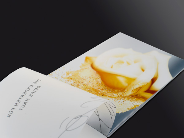 Broschüre für Absolue premuim ßx